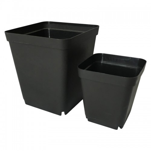 Gallon Small Square Plastic Flower Pot